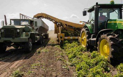 Sale il fatturato delle imprese agricole lombarde, ma i costi toccano i massimi