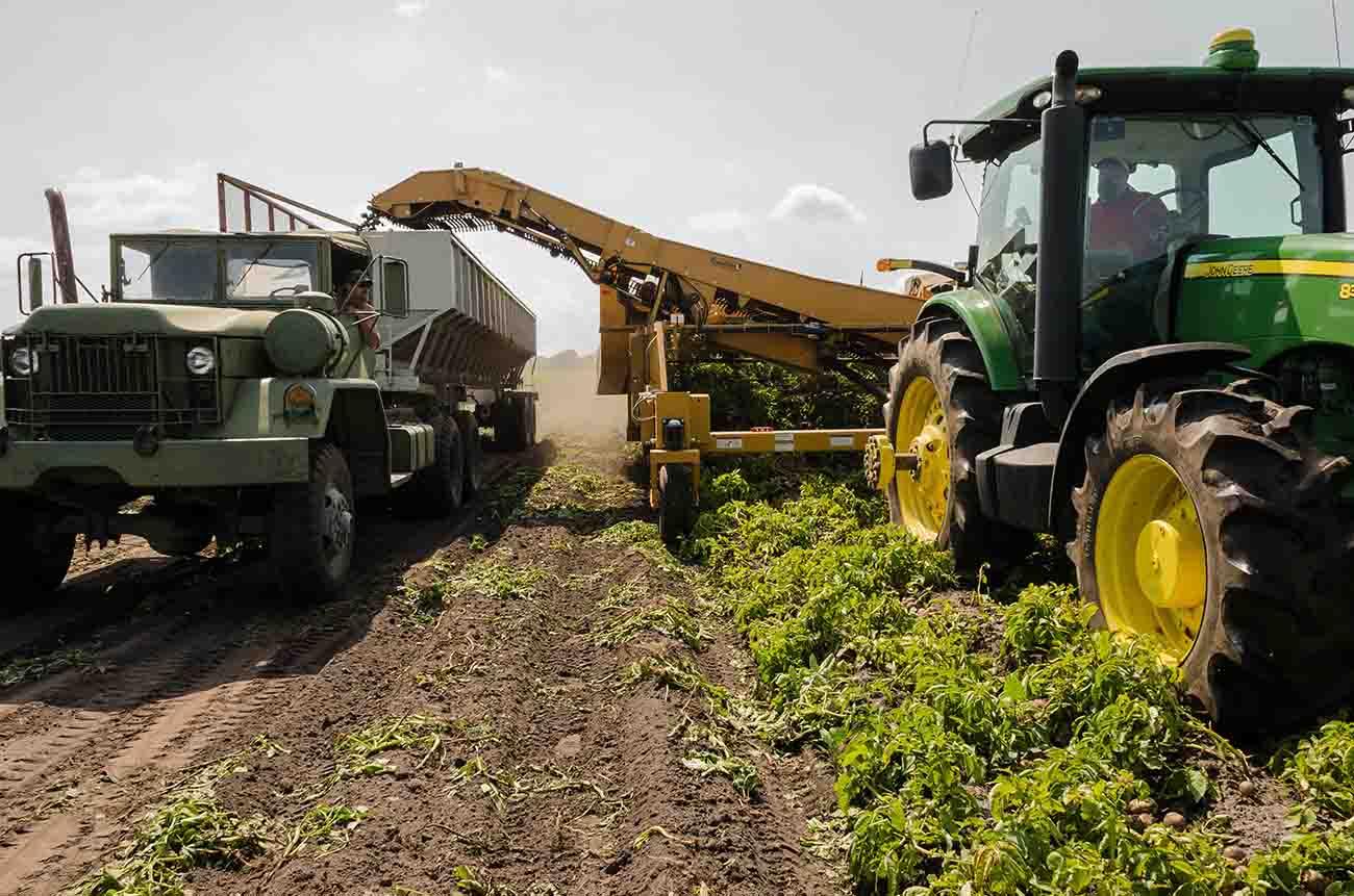 Imprese agricole lombarde