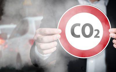 Emissioni CO2, vendere in digitale aiuta l'ambiente a ridurle. Il racconto di Marco Sandrone
