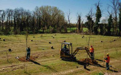 Cpc Inox partner del progetto Forestami per sostenere l'ambiente e il territorio di Gessate