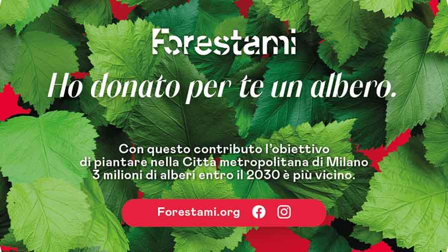 Natale 2020, su Forestami è possibile donare un albero alla Città di Milano