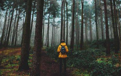 Viaggiare in solitaria, il corso online che ti prepara dalla A alla Z