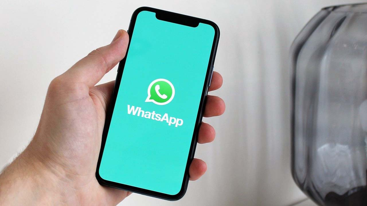 WhatsApp, nuove regole sulla privacy da oggi 15 maggio. Ecco cosa succede se non si accetta il nuovo aggiornamento